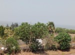 20 Guntha Sea Facing Property Korlai - Alibaug (5)
