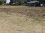 86 Guntha Se facing Property Korlai Village Alibaug1 (1)