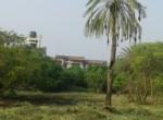 Alibag Property for Sale Dhokawade Awas saswane3
