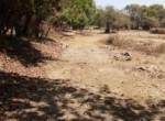 Dhokawade 20 guntha near ashish warde (2)