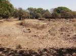 Dhokawade 20 guntha near ashish warde (4)