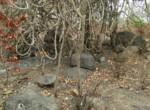 25 Acres in Nagothane roha Alibaug development agreement (17)