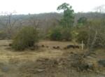 25 Acres in Nagothane roha Alibaug development agreement (2)