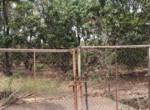 Thal Alibaug 18 Guntha beautiful lake view property (4)