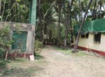 Thal Alibaug 22 Guntha beautiful property with old house (1)