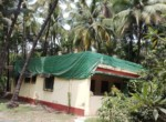 Thal Alibaug 22 Guntha beautiful property with old house (2)