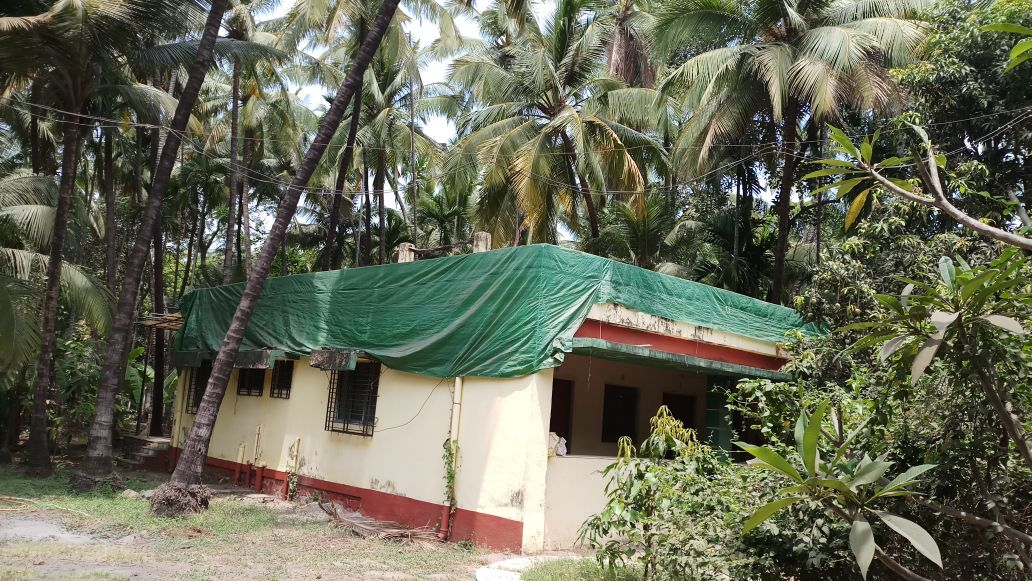 thal alibaug 22 guntha beautiful property with old house