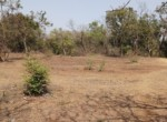 7 Acre beautiful property in Alibag Sogaon (10)