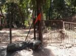 Beautiful 5 Guntha property near Kihim beach in Alibag (4)