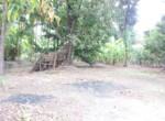 15 5 Guntha Property in Thal Near Beach