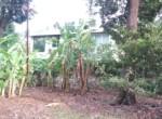 15 5 Guntha Property in Thal Near Beach (4)