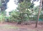 15 5 Guntha Property in Thal Near Beach (5)