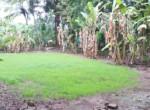 15 5 Guntha Property in Thal Near Beach (8)