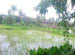 Awas 40 guntha lake view, Maharashtra, India (1)