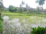Awas 40 guntha lake view, Maharashtra, India