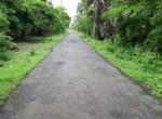 Kihim, Maharashtra 402201, India (6)