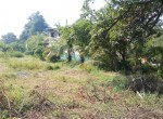 Thal Property Alibaug (1)