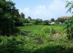 1 Acre Gaothan touch Property 1 KM Mandawa Port (4)