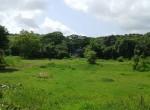 Mandwa Alibag 3 Acres Gaothan touch property (3)