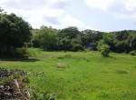 Mandwa Alibag 3 Acres Gaothan touch property (4)