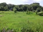 Mandwa Alibag 3 Acres Gaothan touch property (7)