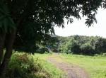Mandwa Alibag 3 Acres Gaothan touch property (8)