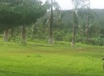 180 degree Sea Facing Land at MURUD (2)