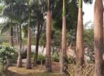 3.5 Bedroom Lavish Villa with Private Swimming Pool (6)