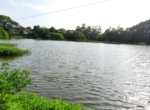 Lake View 1 Acre Plot in Awas - Alibaug (11)