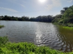 Lake View 1 Acre Plot in Awas - Alibaug (13)