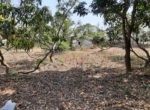 Lake View 1 Acre Plot in Awas - Alibaug (7)