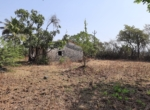 Lake View 1 Acre Plot in Awas - Alibaug (8)