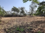 Lake View 1 Acre Plot in Awas - Alibaug (9)