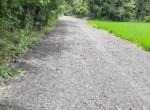 Lavish 59 Guntha property for sale - Alibaug (10)