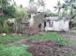 Sea Facing 16 Guntha plot with plantation at Saswane - Alibaug (1)