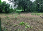 10 guntha land at Zirad- Alibaug, very near from Mandwa-