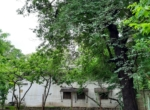 10 guntha land at Zirad- Alibaug, very near from Mandwa- (9)