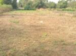 13.2 Guntha Land for sale in Sasawane, Alibaug. (1)