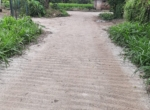 13.2 Guntha Land for sale in Sasawane, Alibaug. (20)