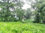 16 Guntha farm at Kankeshwar Fata (11)