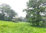 16 Guntha farm at Kankeshwar Fata (8)